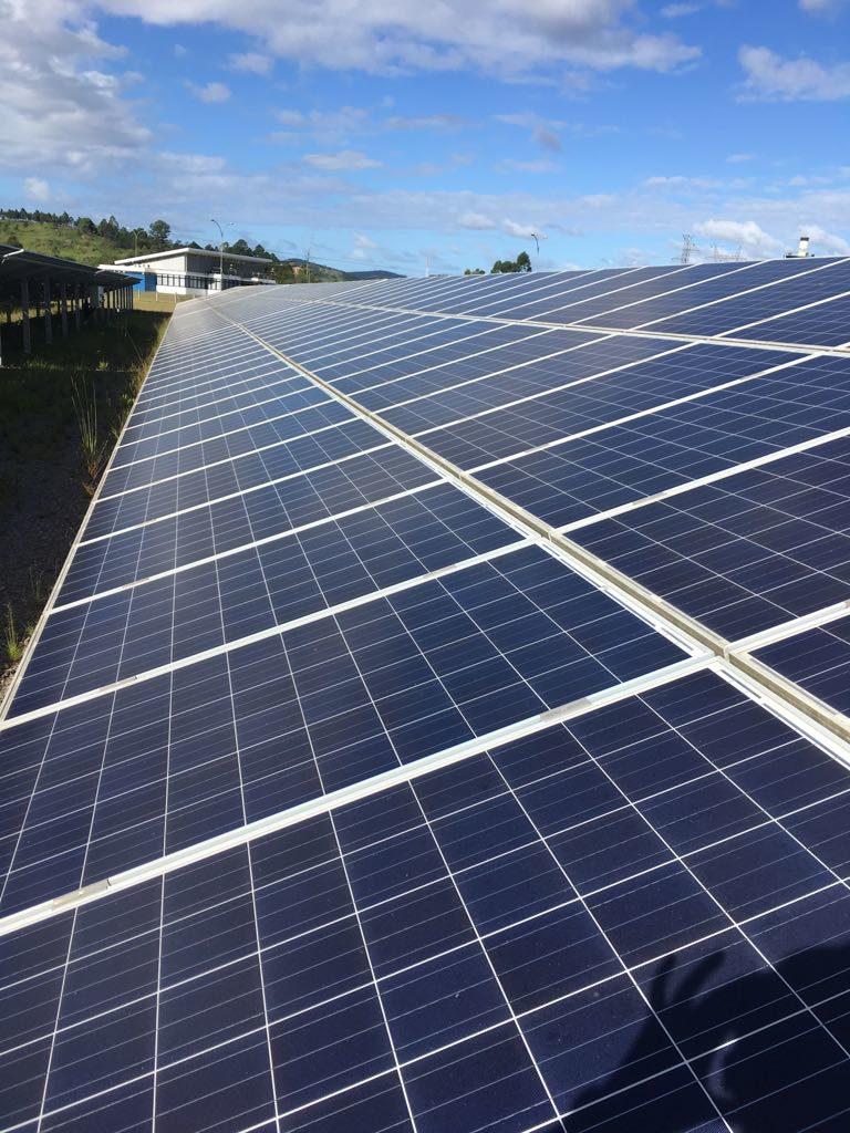 Investimento em energia solar no mundo - Elysia energia solar Porto Alegre Rio Grande do Sul
