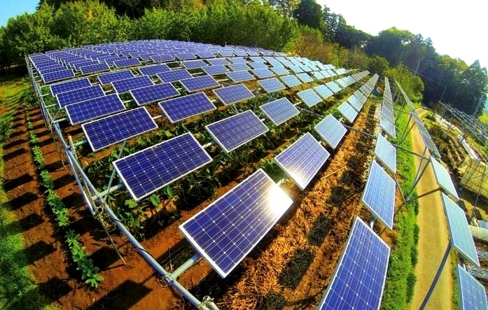 Energia solar no campo - Elysia energia fotovoltaica Porto Alegre Rio Grande do Sul