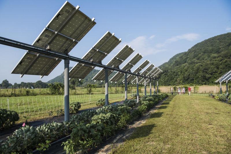 Painéis solares na lavoura - Elysia energia solar
