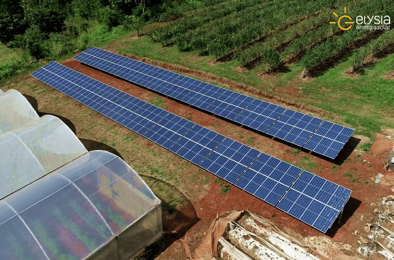 Energia solar em produção rural - Elysia sistema fotovoltaico São Sebastião do Caí